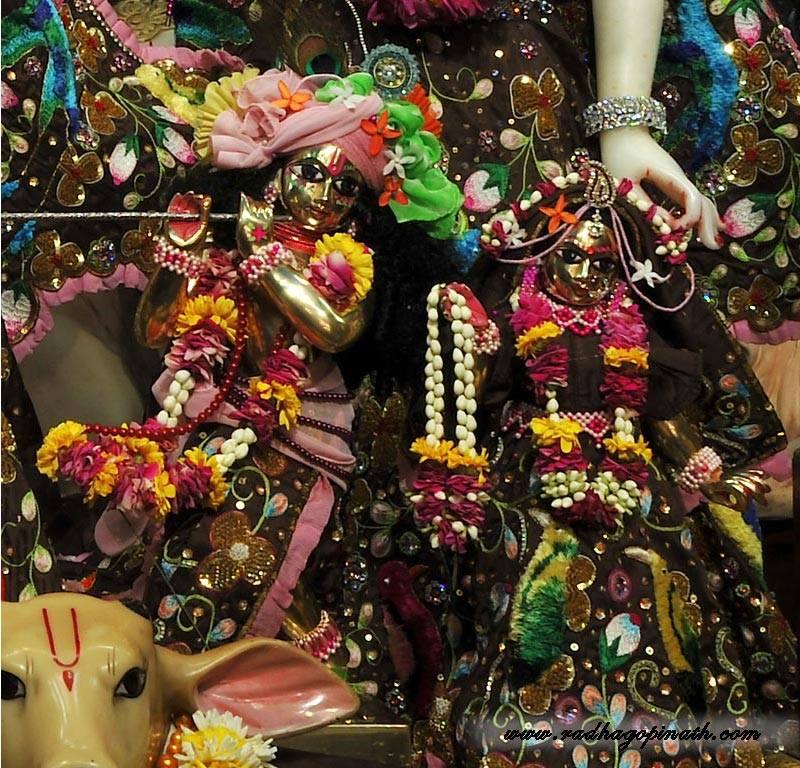 ISKCON Chowpatty Deity Darshan 01 Mar 2016  (10)