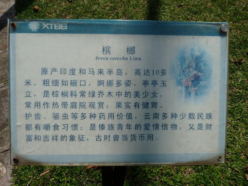 Chine .Yunnan . Lac au sud de Kunming ,Jinghong xishangbanna,+ grand jardin botanique, de Chine +j - Picture1%2B591.jpg