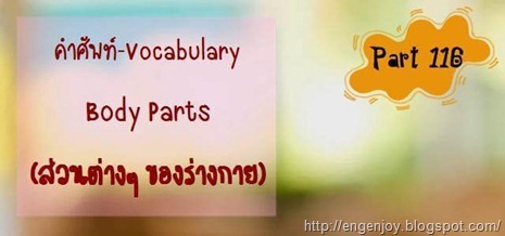 คำศัพท์ภาษาอังกฤษ Body Parts (ส่วนต่างๆ ของร่างกาย)