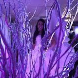 160514AR Ashley Romero Quince Celebration