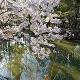 2014 Japan - Dag 7 - jordi-DSC_0366.JPG