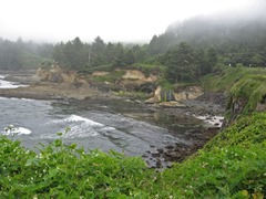 Marcia's Waterfall view, Boiler Bay State Scenic Viewpoint, 2012