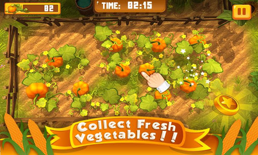Food Farm Frenzy