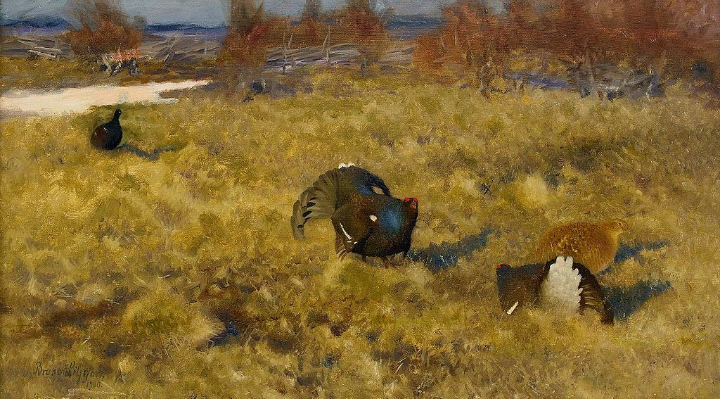 Bruno Liljefors - Black grouse displaying 1900