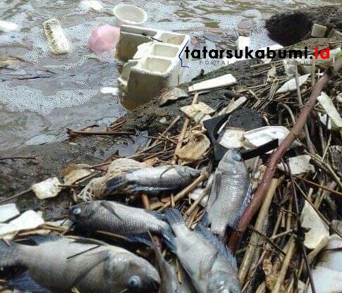 Sungai Cimahi Cibadak Terpapar Limbah// Foto : Isep Panji
