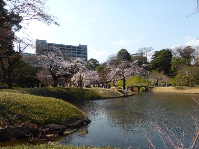 Cath hk jardin de koishikawa korakuen tokyo japon for Jardin koishikawa korakuen