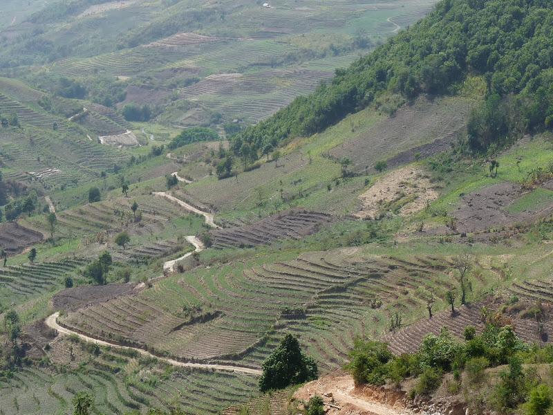 Chine: randonnée xishangbanna, région de Bada - Picture%2B809.jpg