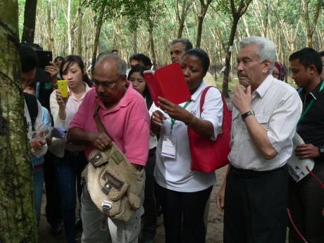 Đoàn nghiên cứu cao su quốc tế tham quan vườn cây Công ty CPCS Đồng Phú