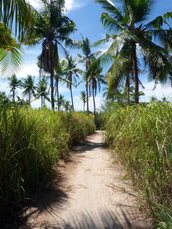 Tour de l île en partie à pied