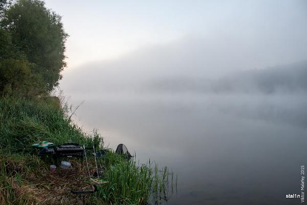 Отакий ставок був зранку - весь в тумані