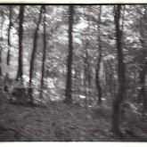 n008-027-1966-tabor-sikfokut.jpg