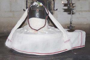 Thirunanipalli (Ponsei) Temple Main Deity Natrunaiyappar