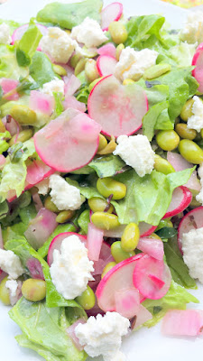 Radish, Edamame, Ricotta and Greens salad
