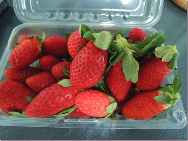 strawberriesDSCN5915