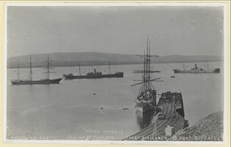Port Victor en 1894. El GULF OF TARANTO entre otros buques. A.D. Edwardes Collection. Del libro Ships scenes at outport, South Australia. State Library of South Australia. La Trove.png