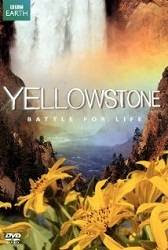Yellowstone: Battle for Life - Cuộc chiến sinh tồn