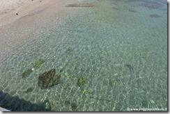 Cetara Costiera Amalfitana