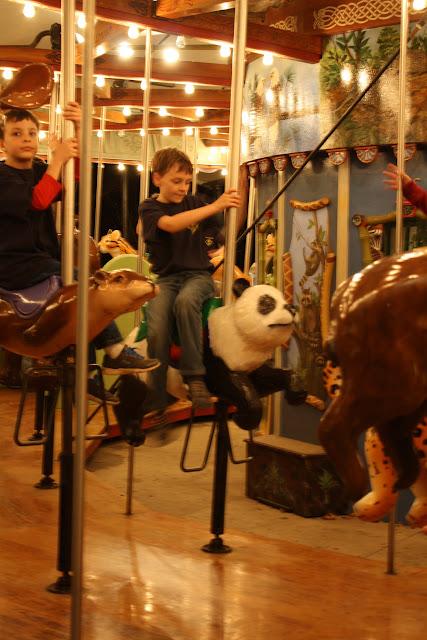Zoo Snooze 2015 - IMG_7105.JPG