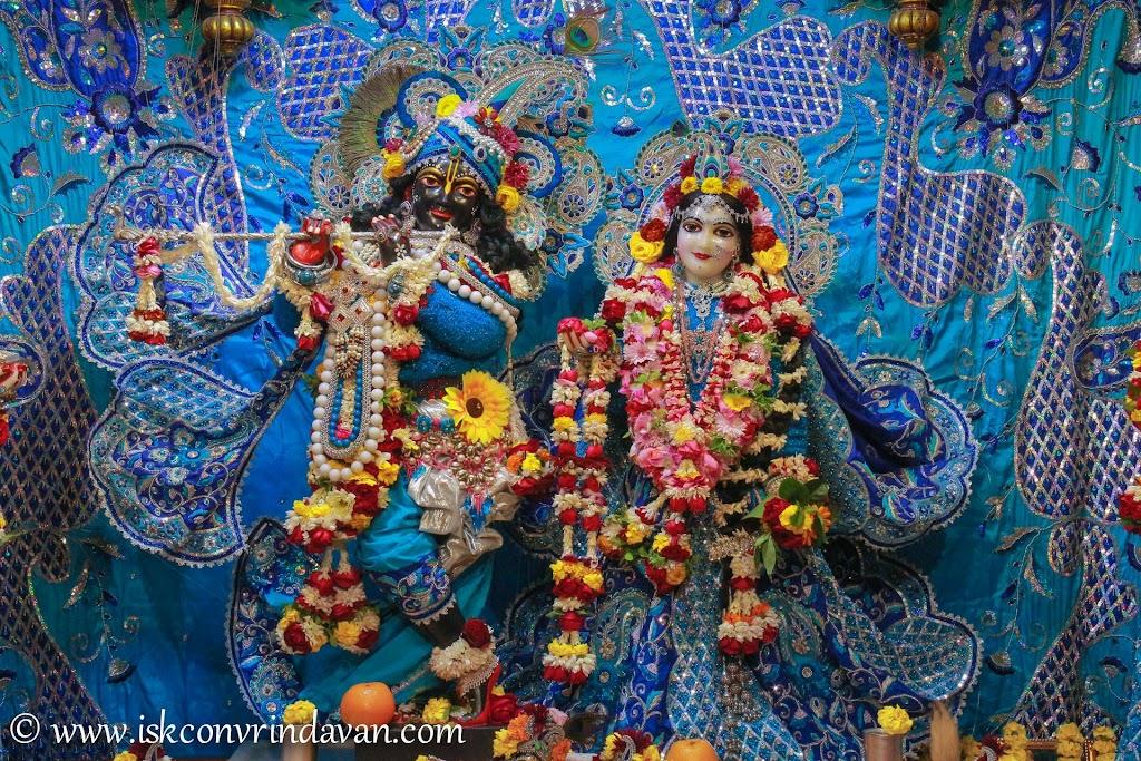 ISKCON Vrindavan Deity Darshan 10 Jan 2017 (1)