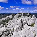 Tema A - Franjo Novosel, Bijele stijene- Bijele Stijene, 2014.