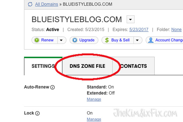 Where to put DNS files in Godaddy