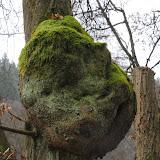 20140101 Neujahrsspaziergang im Waldnaabtal - DSC_9906.JPG