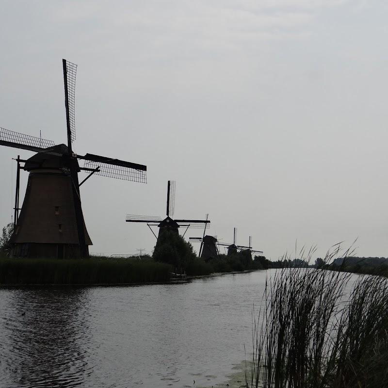 Day_6_Kinderdijk_24.JPG