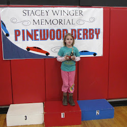 2012 Pinewood Derby