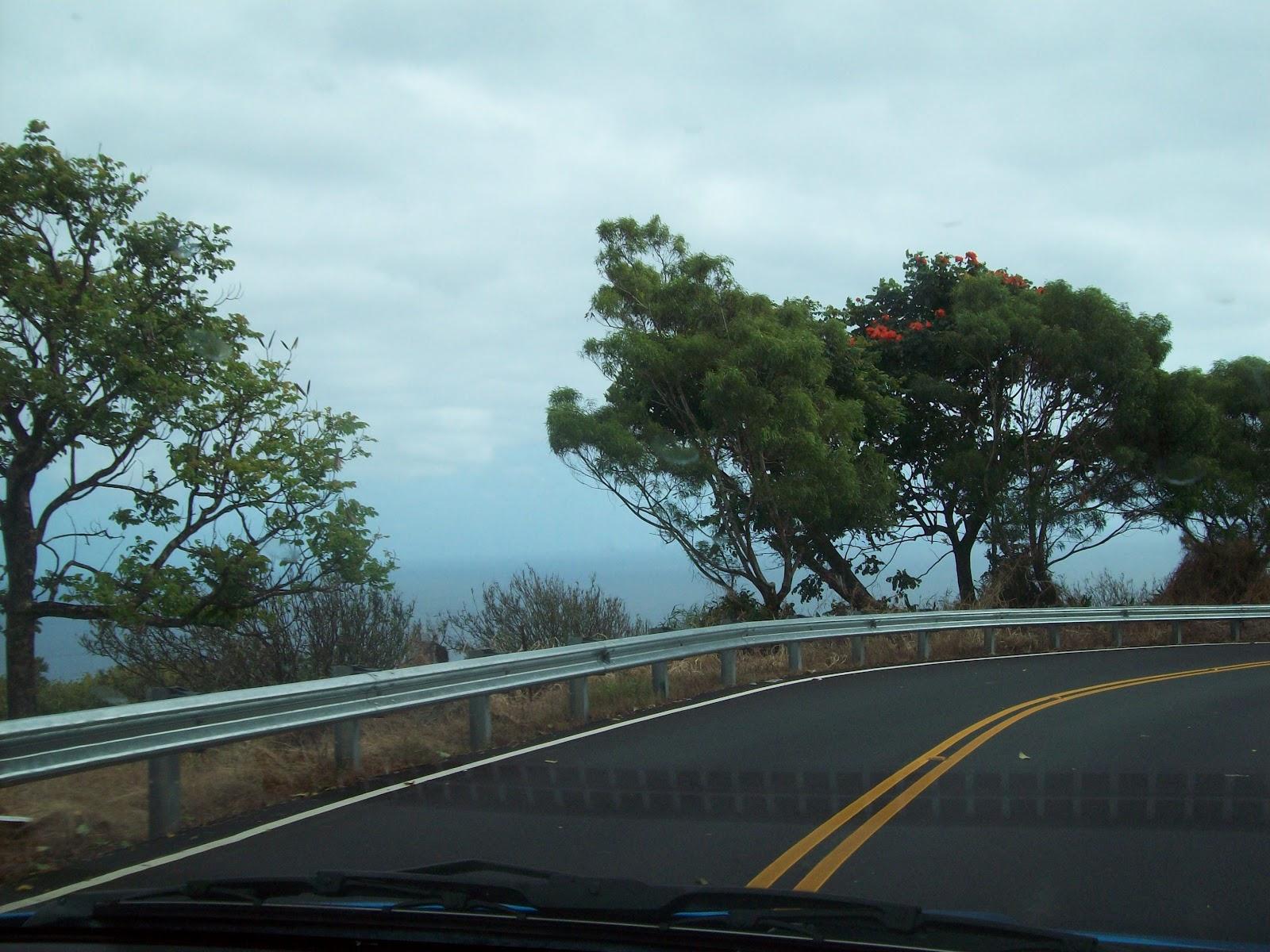 Hawaii Day 5 - 114_1490.JPG
