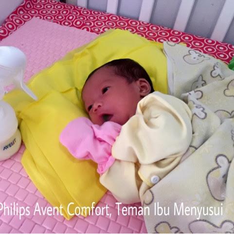 Breastpump Philips Avent Comfort, Teman Ibu Menyusui