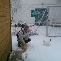 El vivero nevado - 13 de enero de 2009