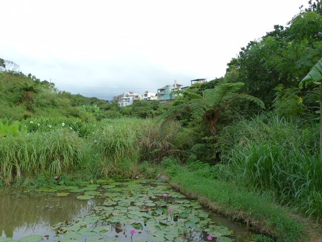 TAIWAN.San Jih juste à côté  de DAN SHUI - P1080044.JPG
