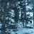 Light Y. avatar image