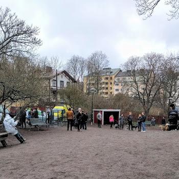 Vitabergsparkens hundrastgård 1319