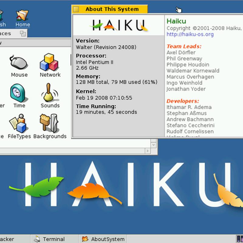 Guida dell'utente Haiku: introduzione, caratteristiche e software compatibile.