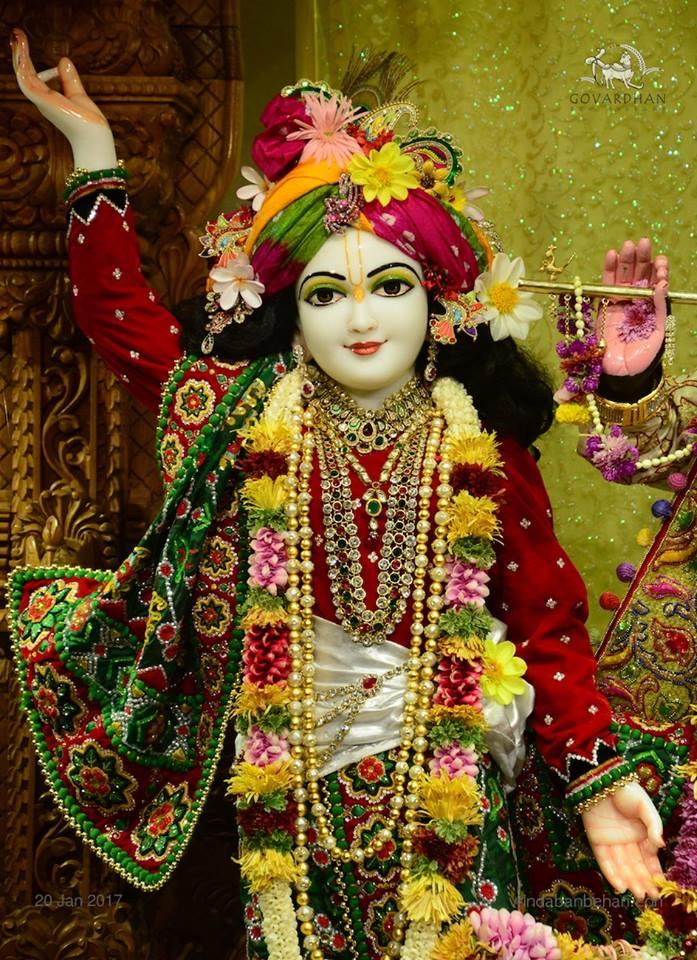 ISKCON GEV Deity Darshan 20 Jan 2017 (3)