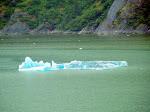 Endicot Arm - Dawes Glacier -  8-17-2009 5-56-06 PM.JPG