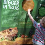 Houston Zoo - 116_8495.JPG
