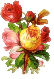 blomster%252520%2525281479%252529.png?gl=DK