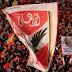 الحكم يطيح بالأهلى خارج البطولة العربية بأخطاء فادحة !