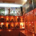 Археологический музей ВГУ 034.jpg