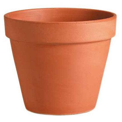 [plant+pot%5B3%5D]