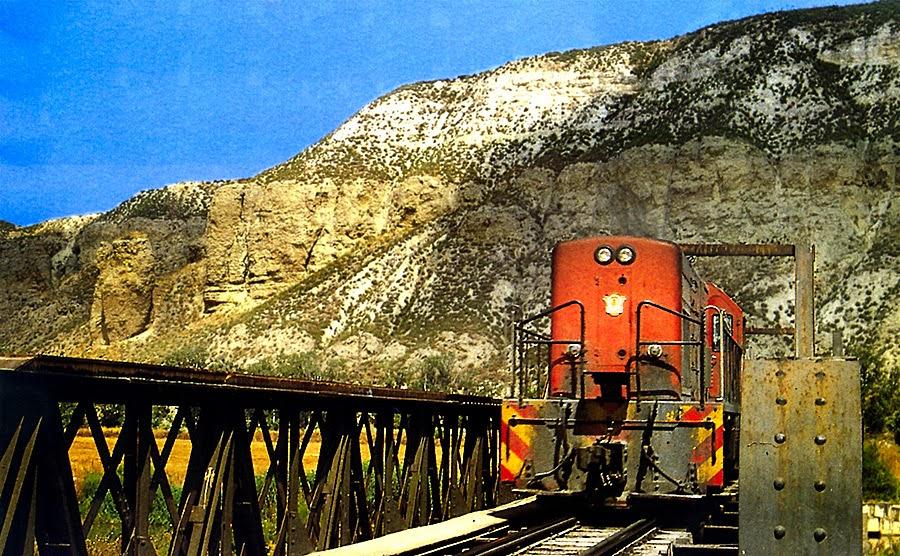 locomotora geco