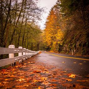 Long road ahead  by Ivan Johnson - Transportation Roads (  )