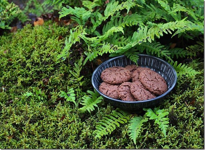 En skål med Nutella i grön mossa och ormbunkar.