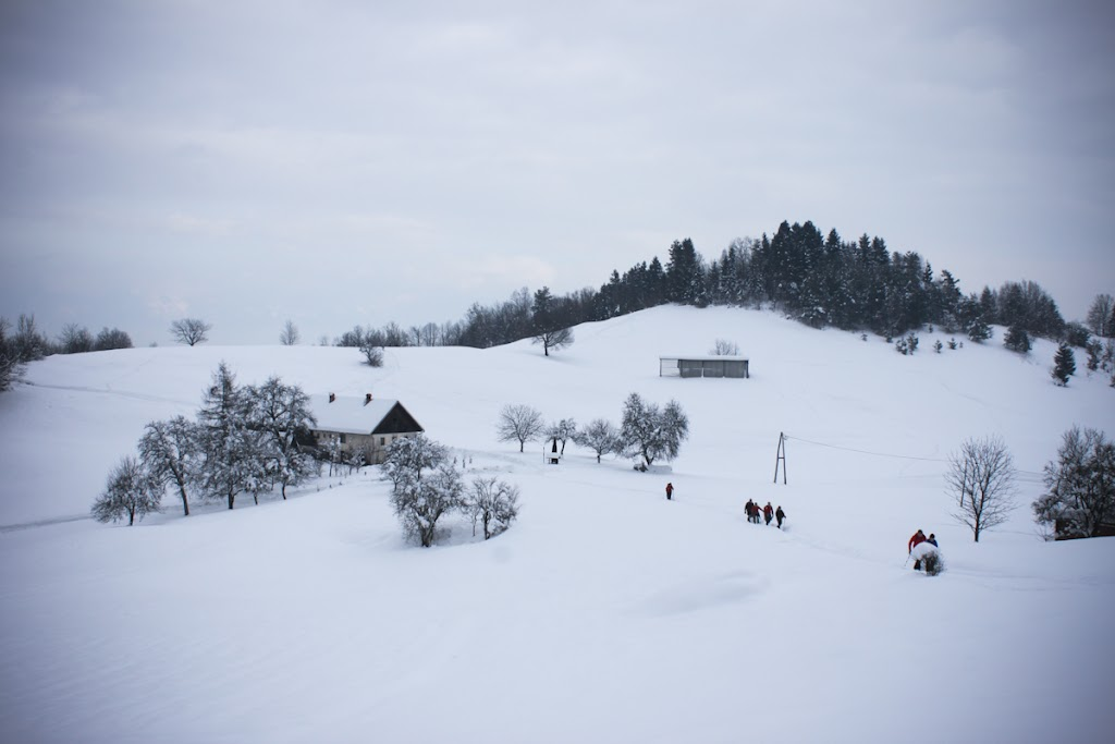 Winter Lubnik - Vika-0620.jpg