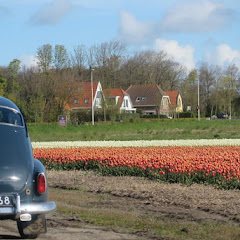 Weekend Noord Holland 2016 - IMG_6509_800x534.JPG