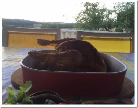 kip met uitzicht