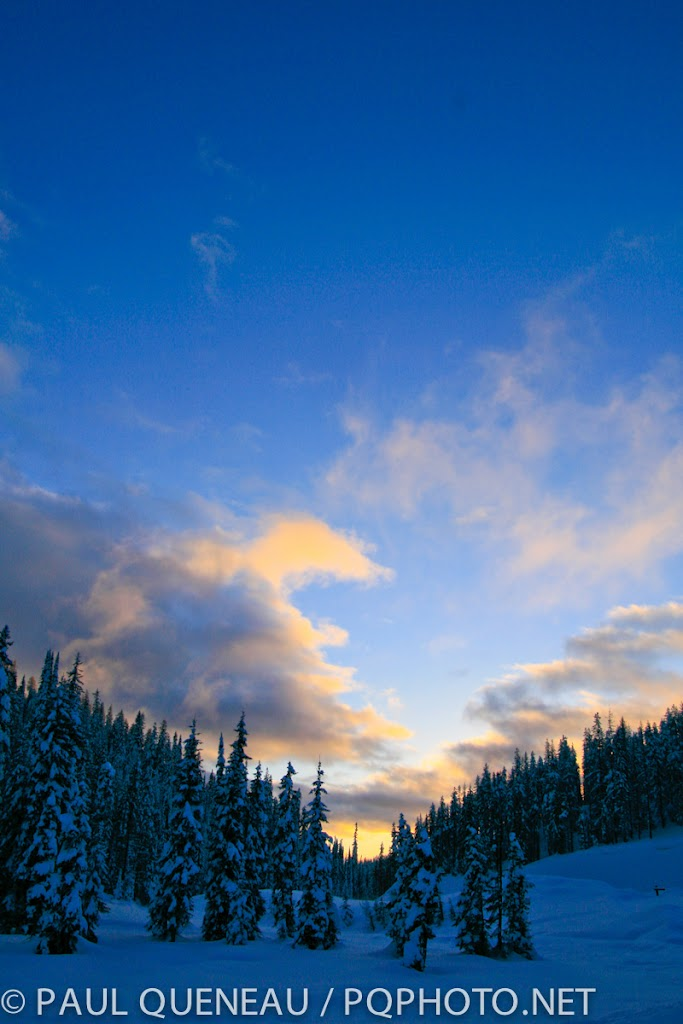 Snowghosts at sunrise.