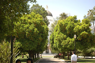 In Capitol Park of Sacramento